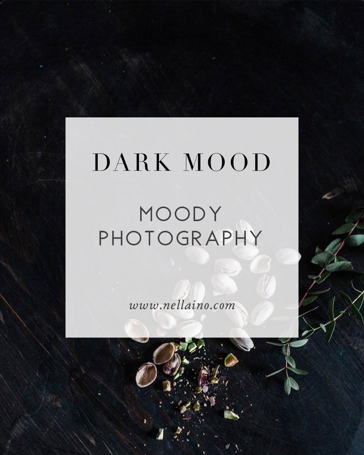 Moody-photography.jpg