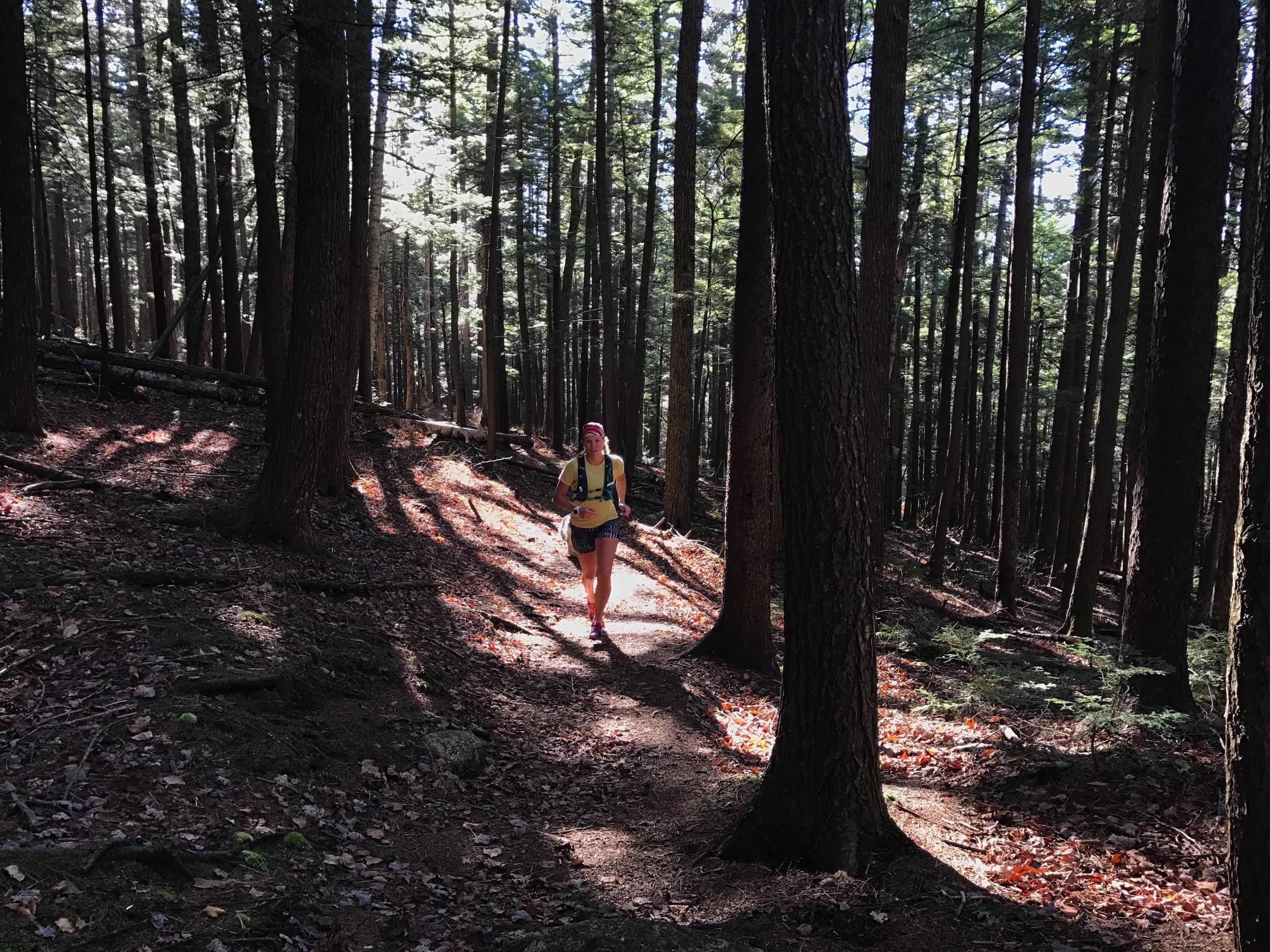 Fall trail run on the Tamworth side of Mt. Chocorua.