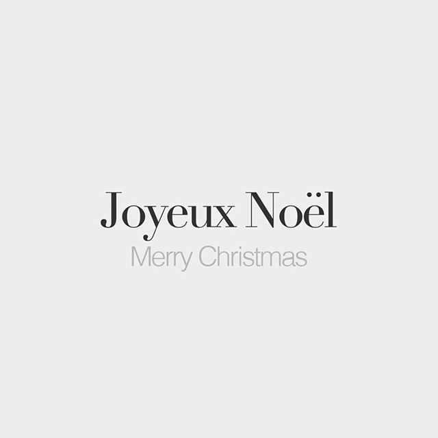 JOYEUX NOËL . . Wishing you all a very Merry Chistmas far and wide. We loved seeing so many of you in the run up to Christmas (Merci beaucoup!) and we wish you a beautiful day with Family and Friends  #merrychristmas #joyeuxnoel #christmasday