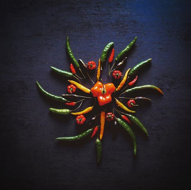 One of the most important spices of Nepal, Chili in its beautiful varieties. #chili #tasteofnepal #spice #spices #taste #recipe #cooking #nepal #nepali #food #foodphotography #flavoursofnepal