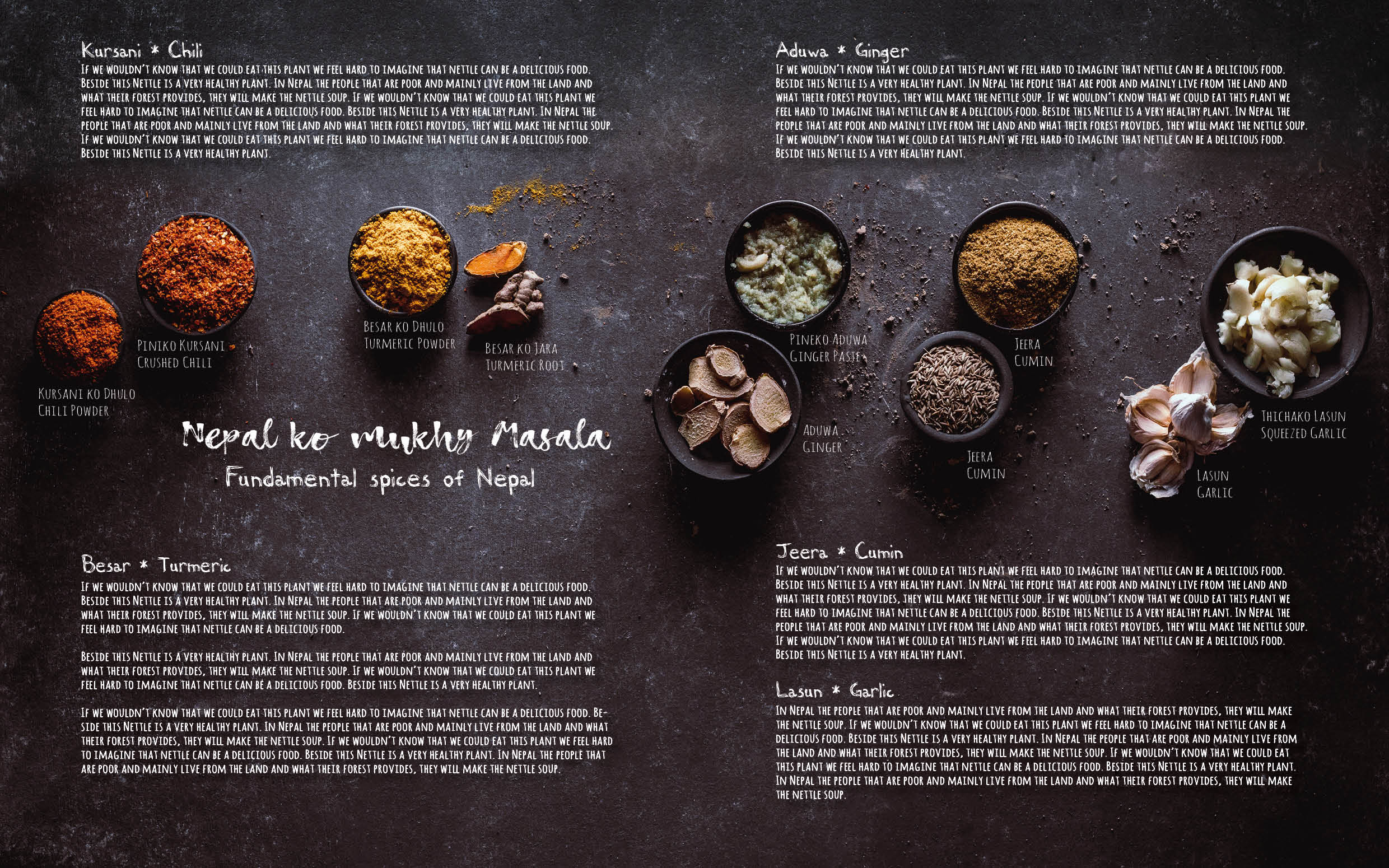 Flavours of Nepal - E-book 2018 - version 1.3-spices -185.jpg