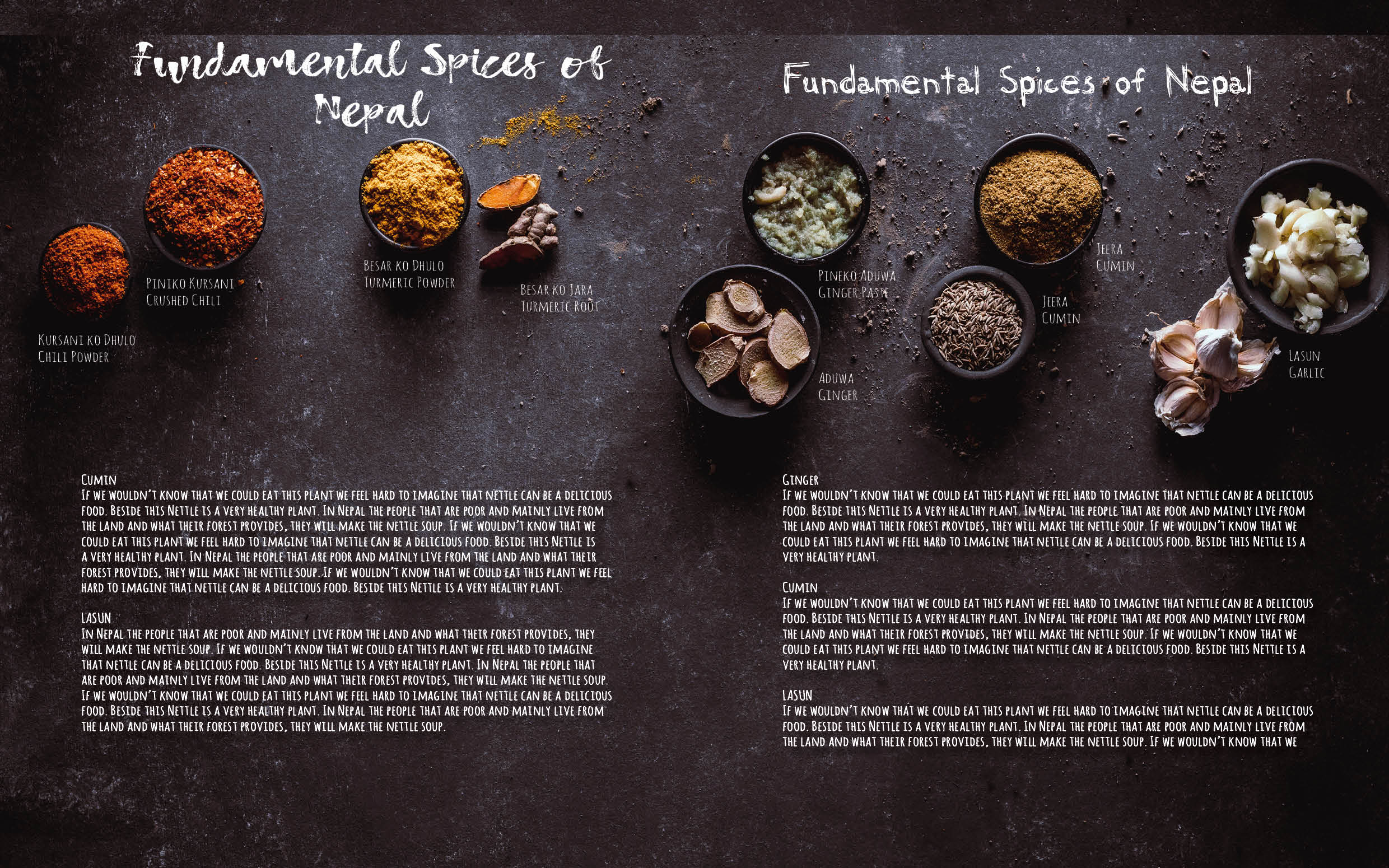 Flavours of Nepal - E-book 2018 - version 1.3-spices -187.jpg