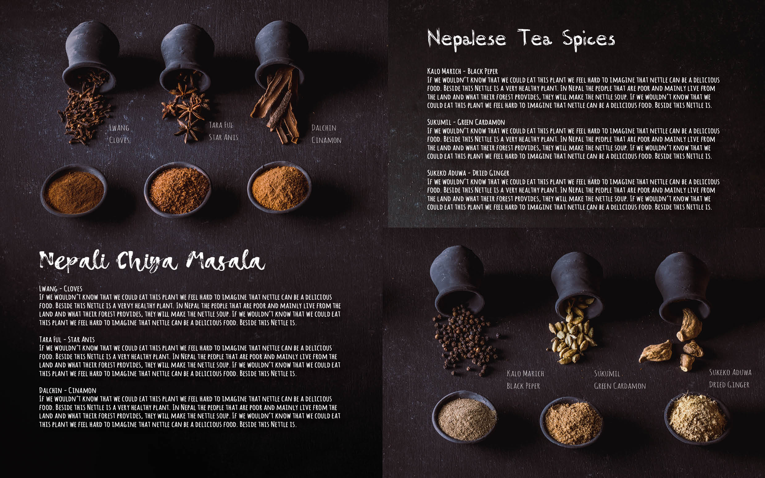 Flavours of Nepal - E-book 2018 - version 1.3-spices -195.jpg