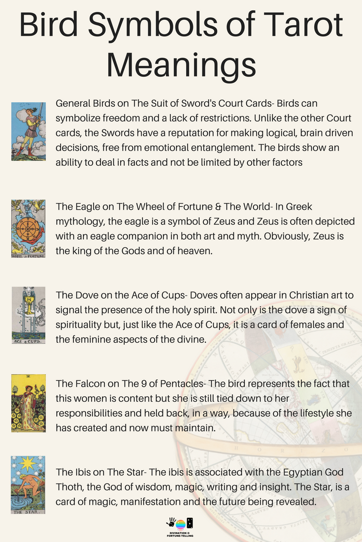The bird symbolism meanings of Tarot cards for beginners! If you're just learning how to read Tarot or practice divination and fortune telling, then learning the interpretations of signs and symbols is a good place to spend your time! Here, I am going to show you the meanings of the birds on The Rider Waite Tarot Card Deck including The Star, 9 of Pentacles, Ace of Cups, Wheel of Fortune, The World and the Swords suit!
