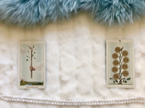 The Ace of Wands and 9 of Pentacles
