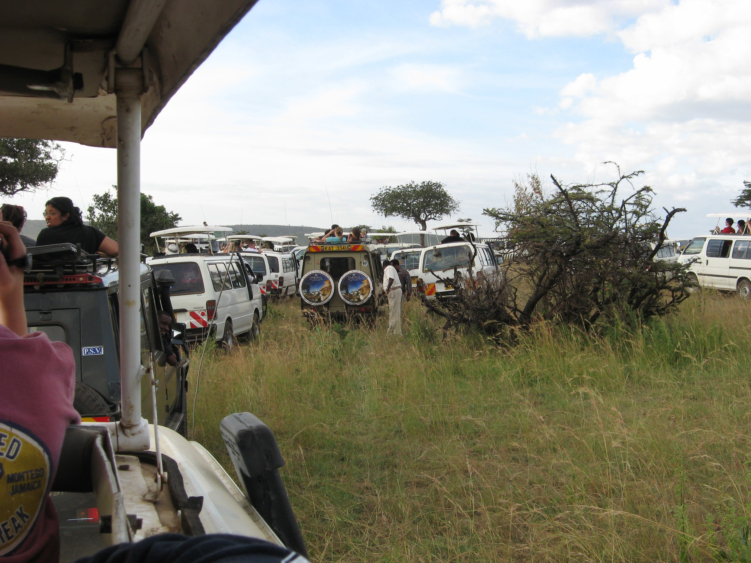 Maasai Mara.jpg