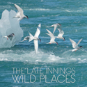 Wild Places   cover art.  Click for hi-res.