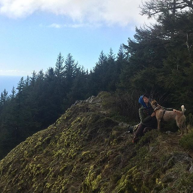 My favorite dog friend and the leader of our pack, atop Neahkahnie Mountain, which translates to place of supreme deity... #ryedog #rescuepup #heelersofinstagram 📸 by @silasfinchsculptor