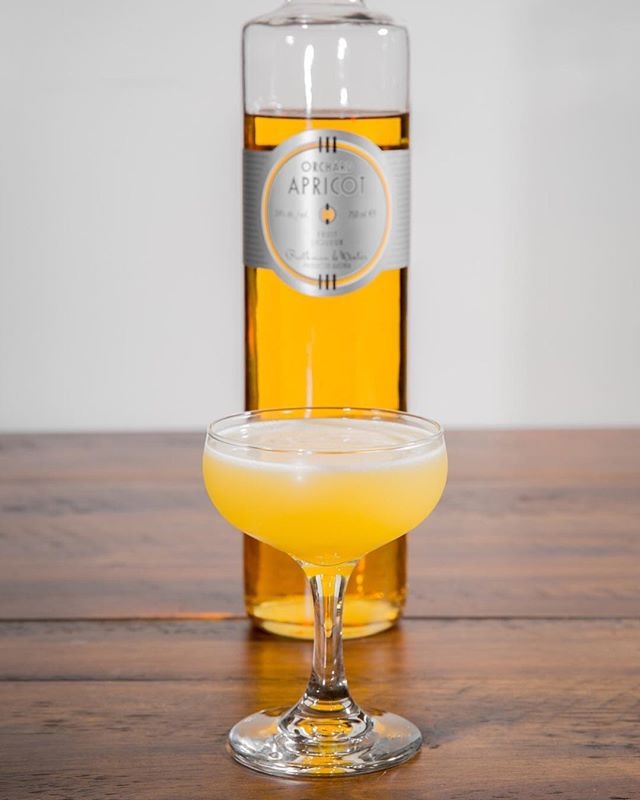 The Hotel Nacional is a fruity and complex cocktail. It brings together light and aged rum, lime juice, pineapple juice, and apricot liqueur. There's a lot going on here, but it's immensely crushable, and you'll be asking for another as soon as you have your first sip. ⠀⠀ ⠀⠀ It's a great way to use that bottle of apricot liqueur on your liquor shelf. ⠀⠀ ⠀⠀ #cocktail #cocktails #booze #drink #drinks #drinkdrankdrunk #drank #drunk #alcohol #mixology #cocktailbar #bartender #bar #bars #bartenders #food #tasty #liquor #thirsty #pub #cheers #happyhour #cocktailparty #rum #apricot #tiki #fruity #lime #rumlover