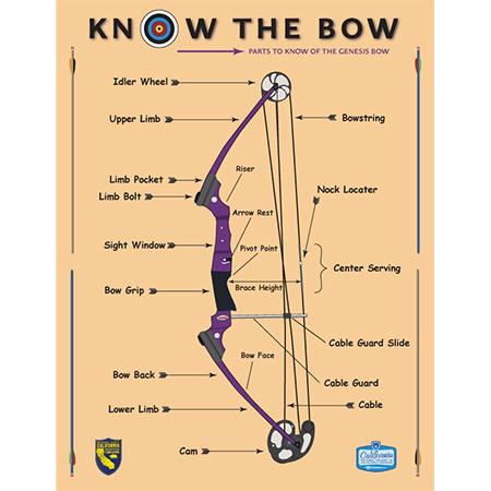 Bow Illustration for CDFG