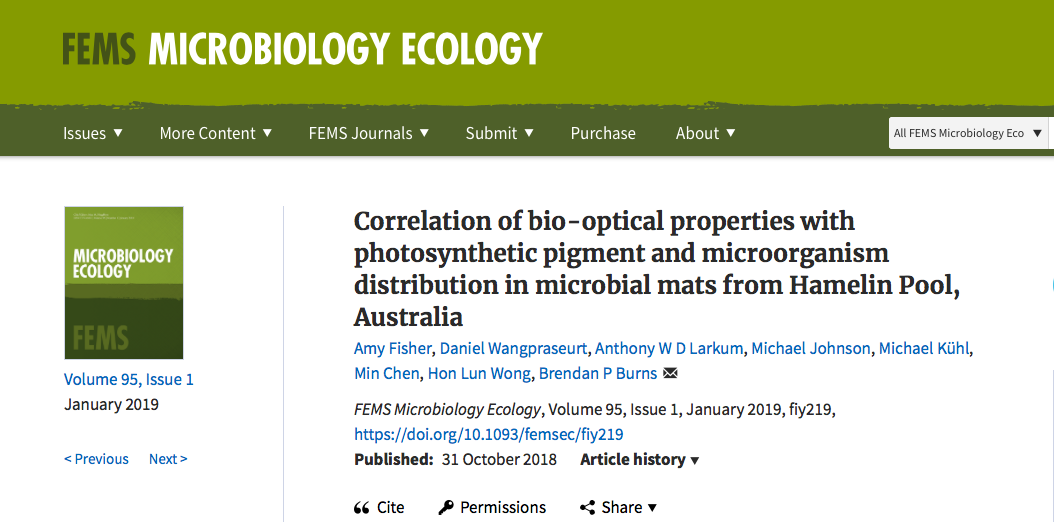 NEW PAPER IN FEMS MICROBIOLOGY ECOLOGY:    31 OCT 2018    ABSTRACT   Microbial mats and stromatolites are widespread in Hamelin Pool, Shark Bay, however the phototrophic capacity of these systems is unknown. This study has determined the optical properties and light-harvesting potential of these mats with light microsensors. These characteristics were linked via a combination of 16S rDNA sequencing, pigment analyses and hyperspectral imaging. Local scalar irradiance was elevated over the incident downwelling irradiance by 1.5-fold, suggesting light trapping and strong scattering by the mats. Visible light (400–700 nm) penetrated to a depth of 2 mm, whereas near-infrared light (700–800 nm) penetrated to at least 6 mm. Chlorophyll  a  and bacteriochlorophyll  a  (Bchl  a ) were found to be the dominant photosynthetic pigments present, with BChl  a  peaking at the subsurface (2–4 mm). Detailed 16S rDNA analyses revealed the presence of putative Chl  f -containing  Halomicronema  sp. and photosynthetic members primarily decreased from the mat surface down to a depth of 6 mm. Data indicated high abundances of some pigments and phototrophic organisms in deeper layers of the mats (6–16 mm). It is proposed that the photosynthetic bacteria present in this system undergo unique adaptations to lower light conditions below the mat surface, and that phototrophic metabolisms are major contributors to ecosystem function.  AUTHORS:  Amy Fisher,  Daniel Wangpraseurt , Anthony Larkum, Michael Johnson, Michael Kuhl, Min Chen, HOn Lun Wong, Brendan Burns