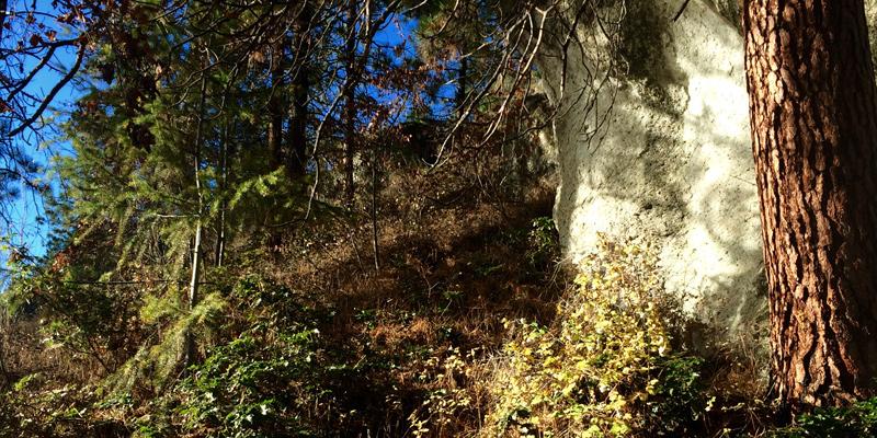 fintry-provincial-park-hikes-west-kelowna-okanagan-valley-vagabonds
