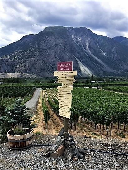 Similkameem Roadtrip - Organix Winery Trail.JPG