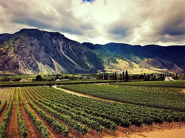 View from Corelettes Winery Keremeos.jpg