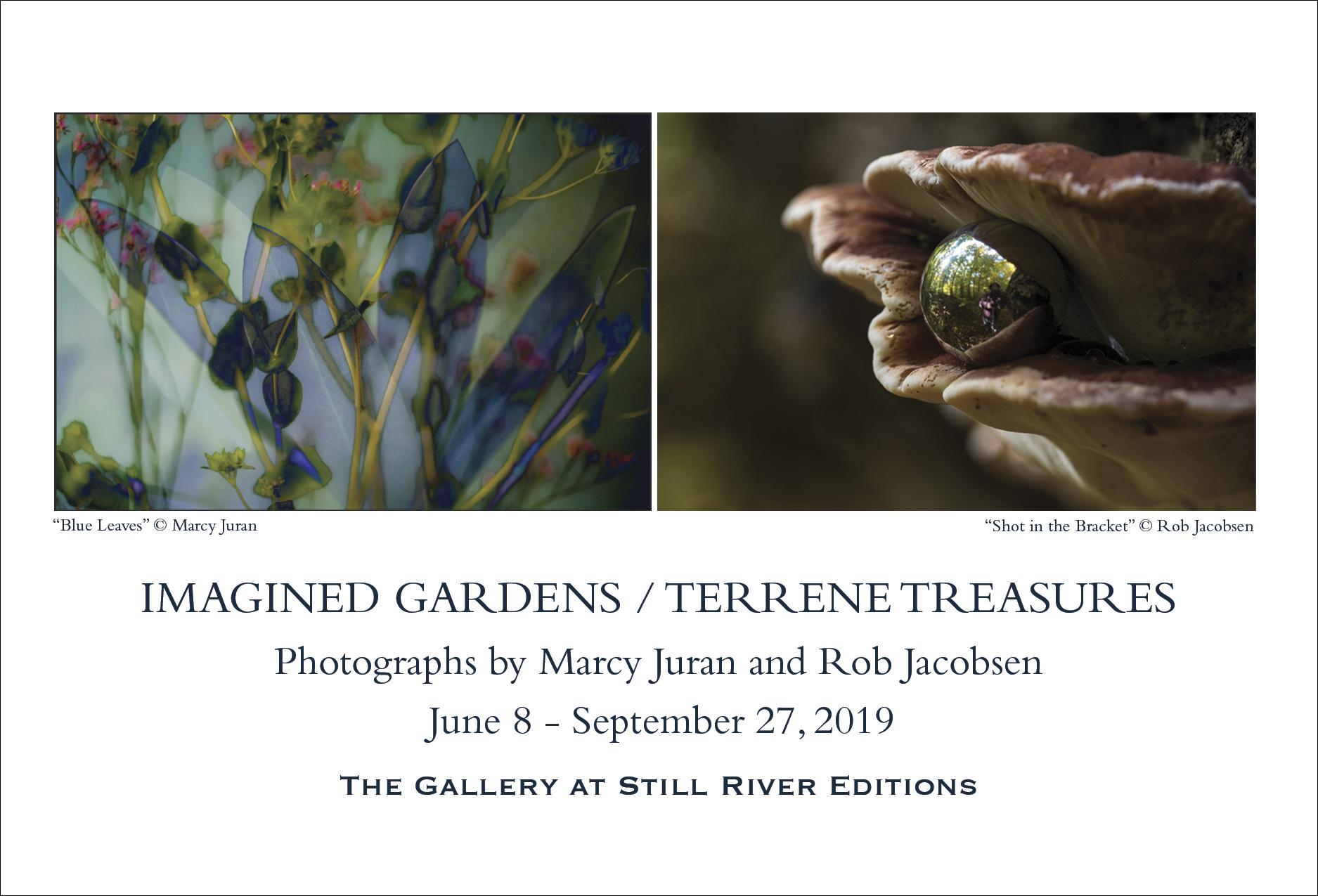 a_gardenterrene_4x6_Standard_Postcards-newtemp.jpg