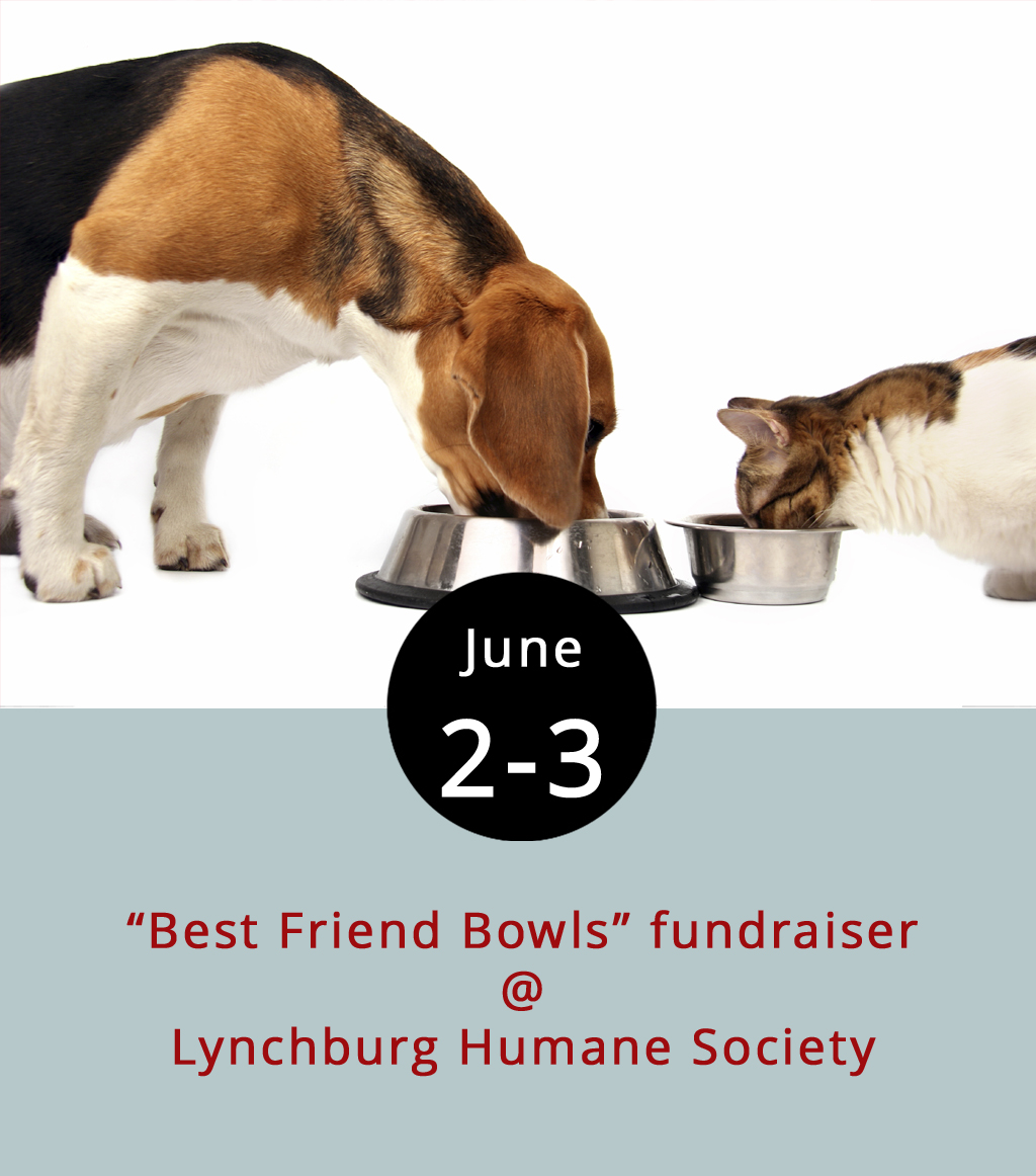 """What to get a pet that has everything? A personalized kibble receptacle hand-crafted by a local artist could be the right call. The Lynchburg Humane Society (1211 Old Graves Mill Rd.) has partnered with the Academy Center of the Arts to present a """"Best Friend Bowls"""" fundraiser. It begins on Friday evening from 5-8 p.m., with a preview and reception featuring beer and wine, live music by Jessica Yakabouski, art by Willie Shouse, and adoptable pets. And, it continues through Saturday from 11 a.m.-3 p.m. Water and food bowls packed with treats and toys will be on sale, there will be plenty of kittens and puppies on hand, and you'll also have an opportunity to order customized bowls from the artists and participate in pottery lessons. For more information call (434) 448-0088 or click  here ."""