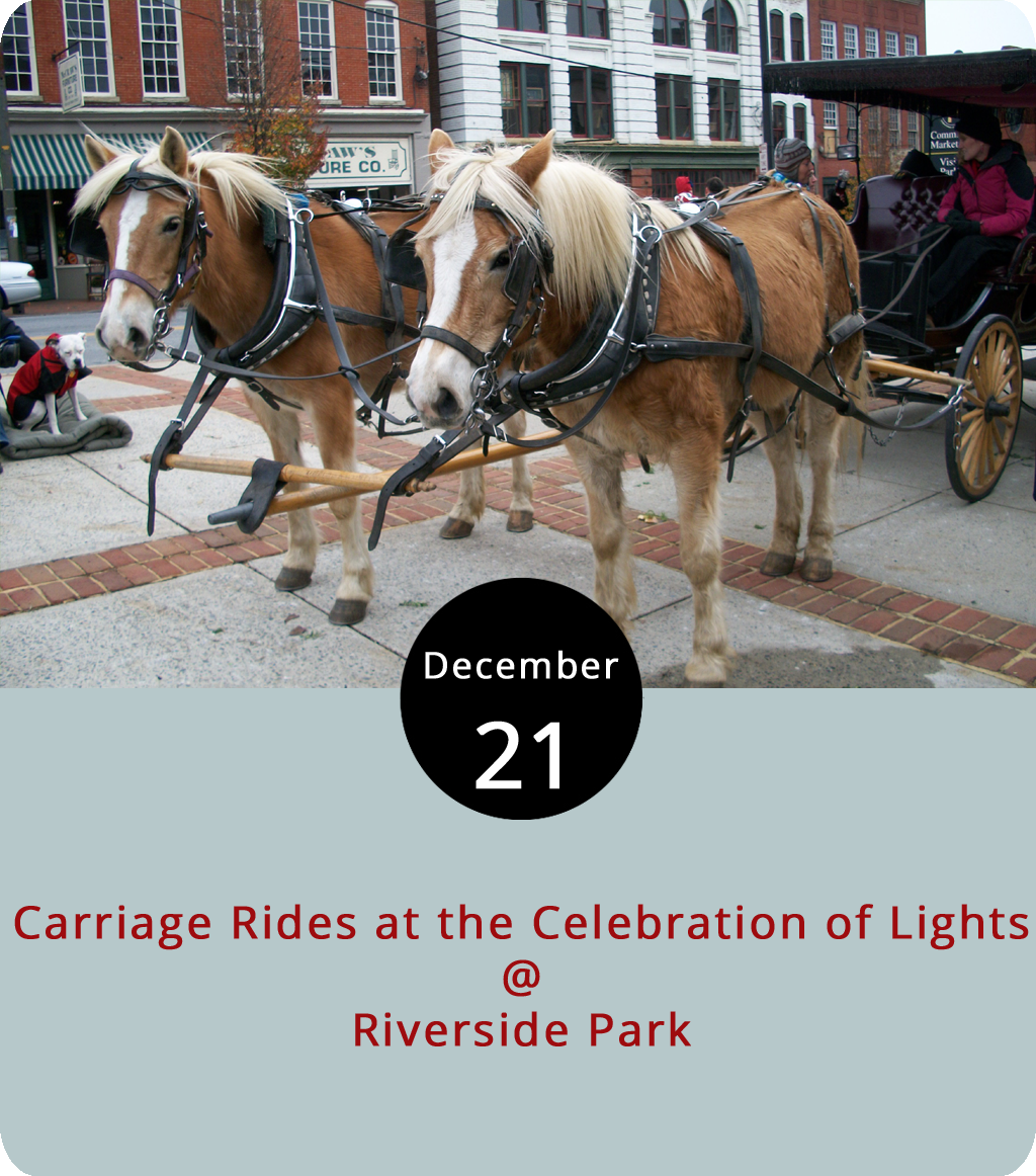 It could be a lovely night to catch a Christmas light-lit carriage ride through Riverside Park (2238 Rivermont Ave.) tonight as the Lynchburg Parks and Rec Celebration of Lights continues. The light show, which includes a collection of displays made by local businesses and organizations, will continue through Jan. 1 from 5-9 p.m. every night. Parks and Rec encourages riders to pre-register  here  for the carriage rides, which will be provided for $6 per person on a first-come, first-served basis. Even if they sell out, you can probably walk through the park and check out the lights, but cars won't be able to drive through tonight. Mama Crockett's Cider Donuts and Nomad Coffee will be available alongside corn hole and a fire pit at the tennis court parking lot. They'll also have some dancing gingerbread men, but we're not sure what that's all about. Starting at 6 p.m., visitors can park at Elizabeth's' Early Learning Center (2320 Bedford Ave.) where Parks and Rec will shuttle them to the park. For more information, click  here  or call (434) 455-5858.
