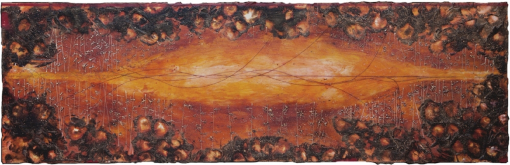 Corona Vortex, 2010  encaustic and oil on panel 24 x 70 inches  Private Collection, Portland