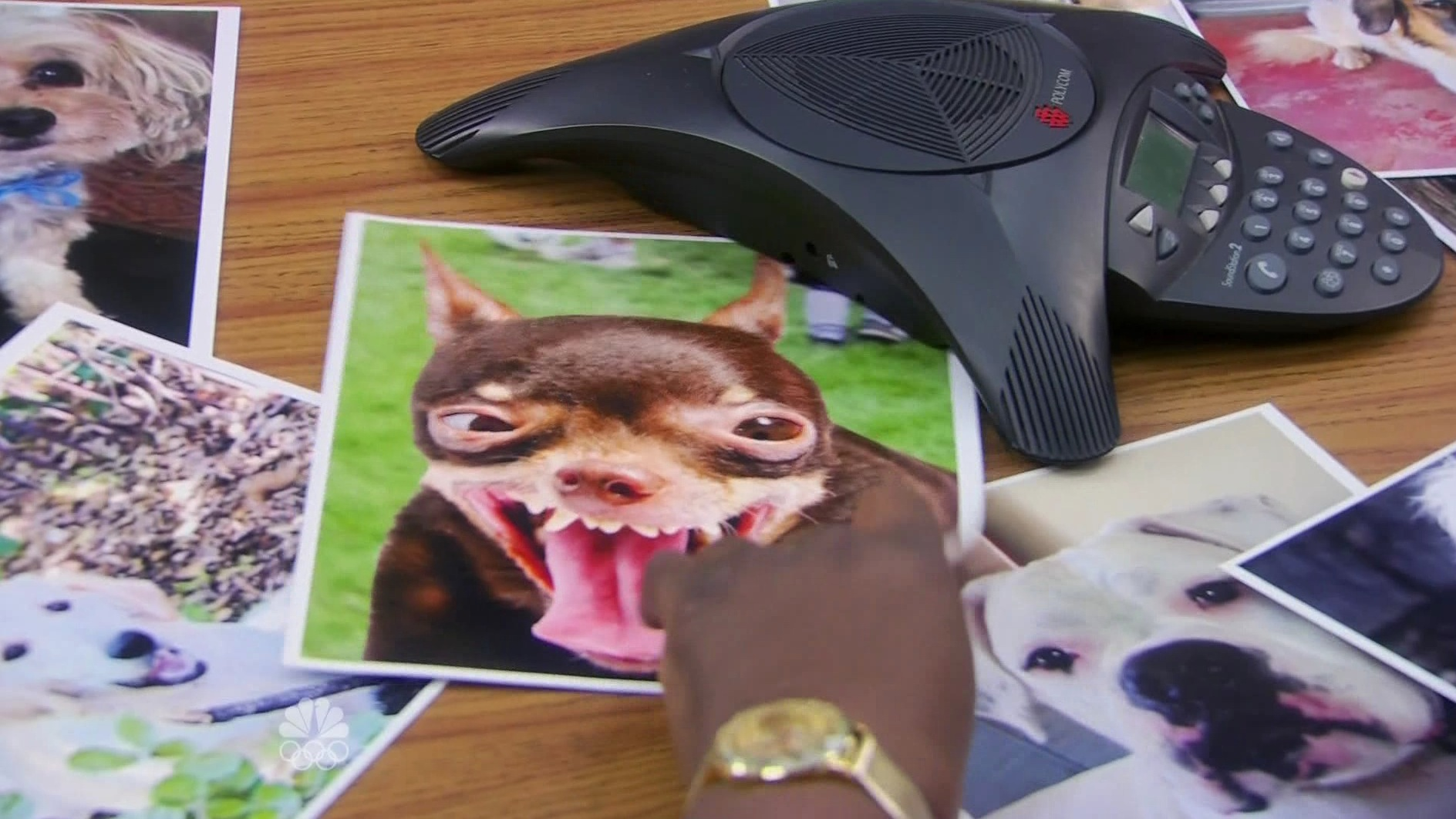 Polycom • Parks and Recreation