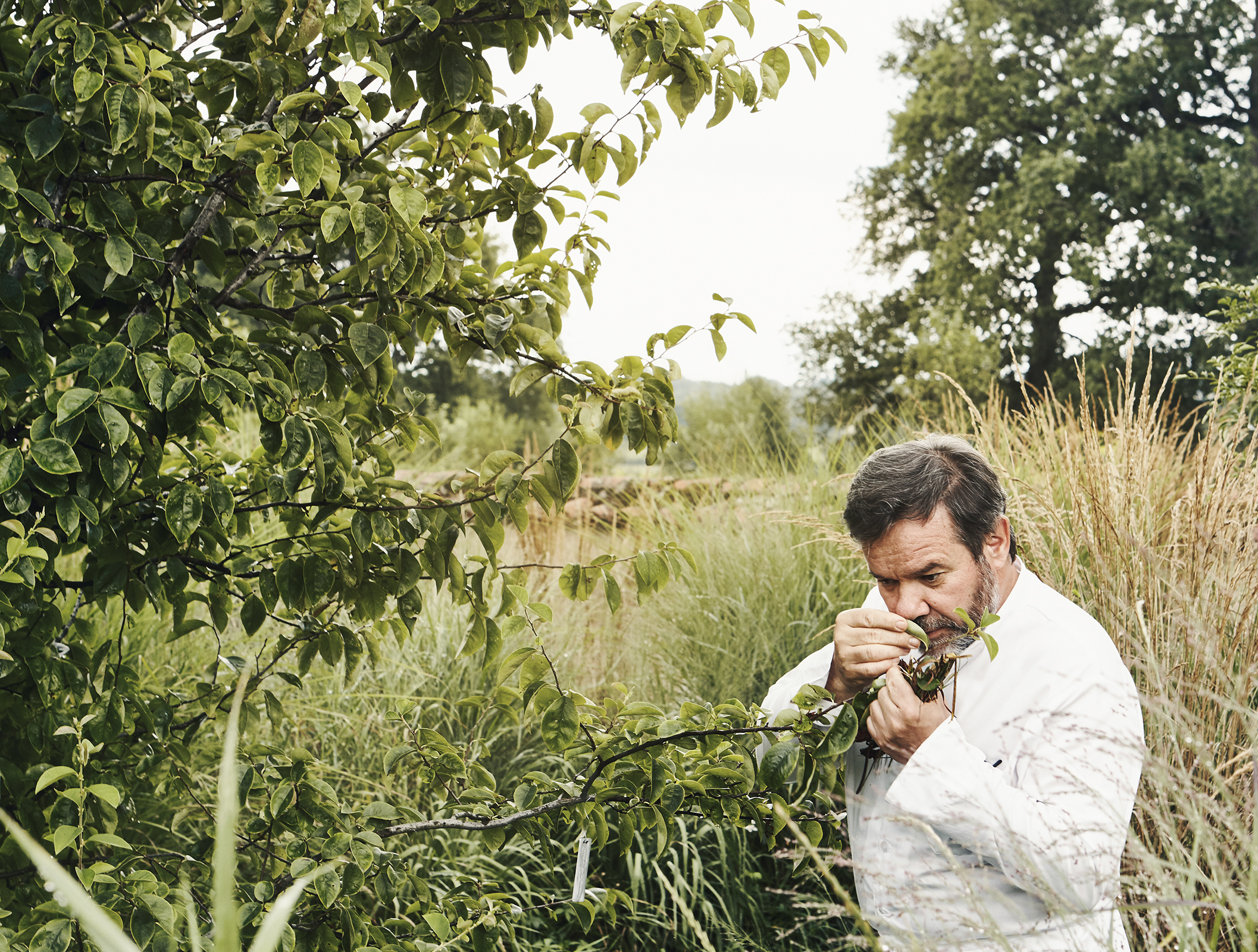 Michel Troisgros wanders in the front garden