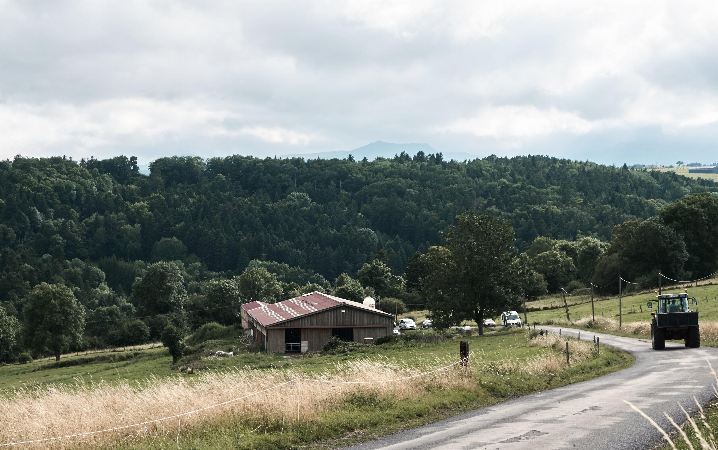 REGIONAL FLAVOUR -
