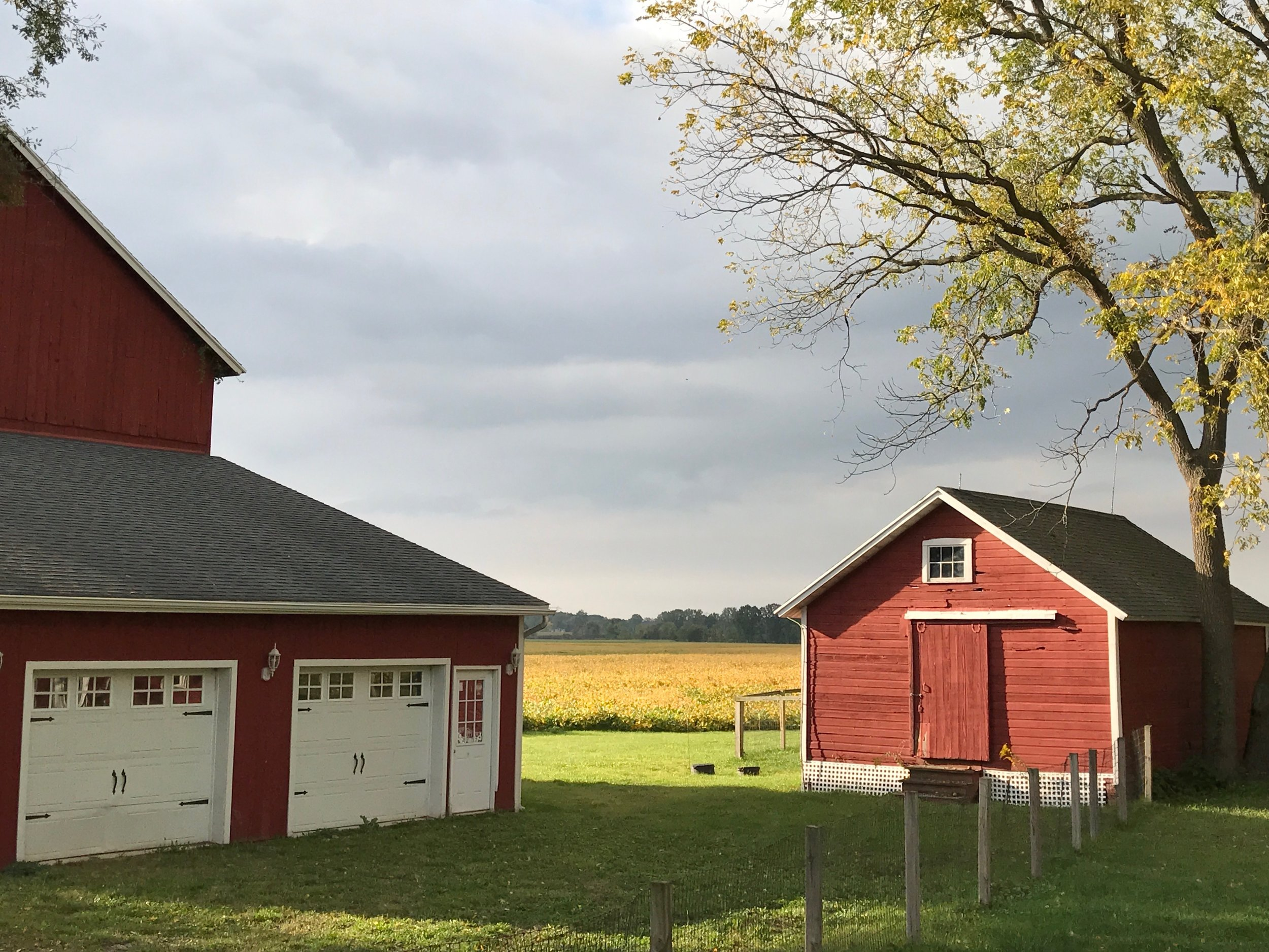 Autumn sunset at the farm
