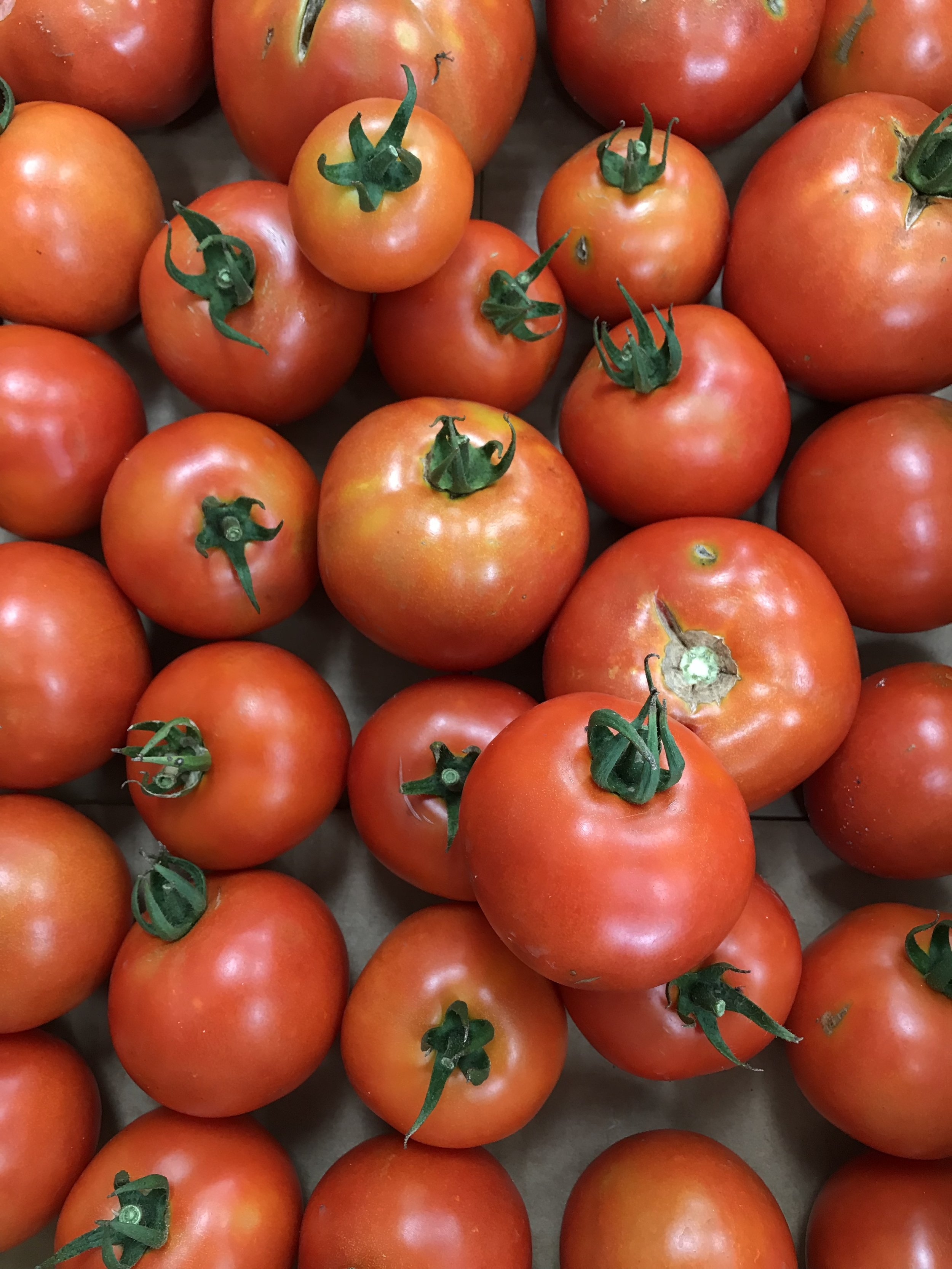 Tomato donation
