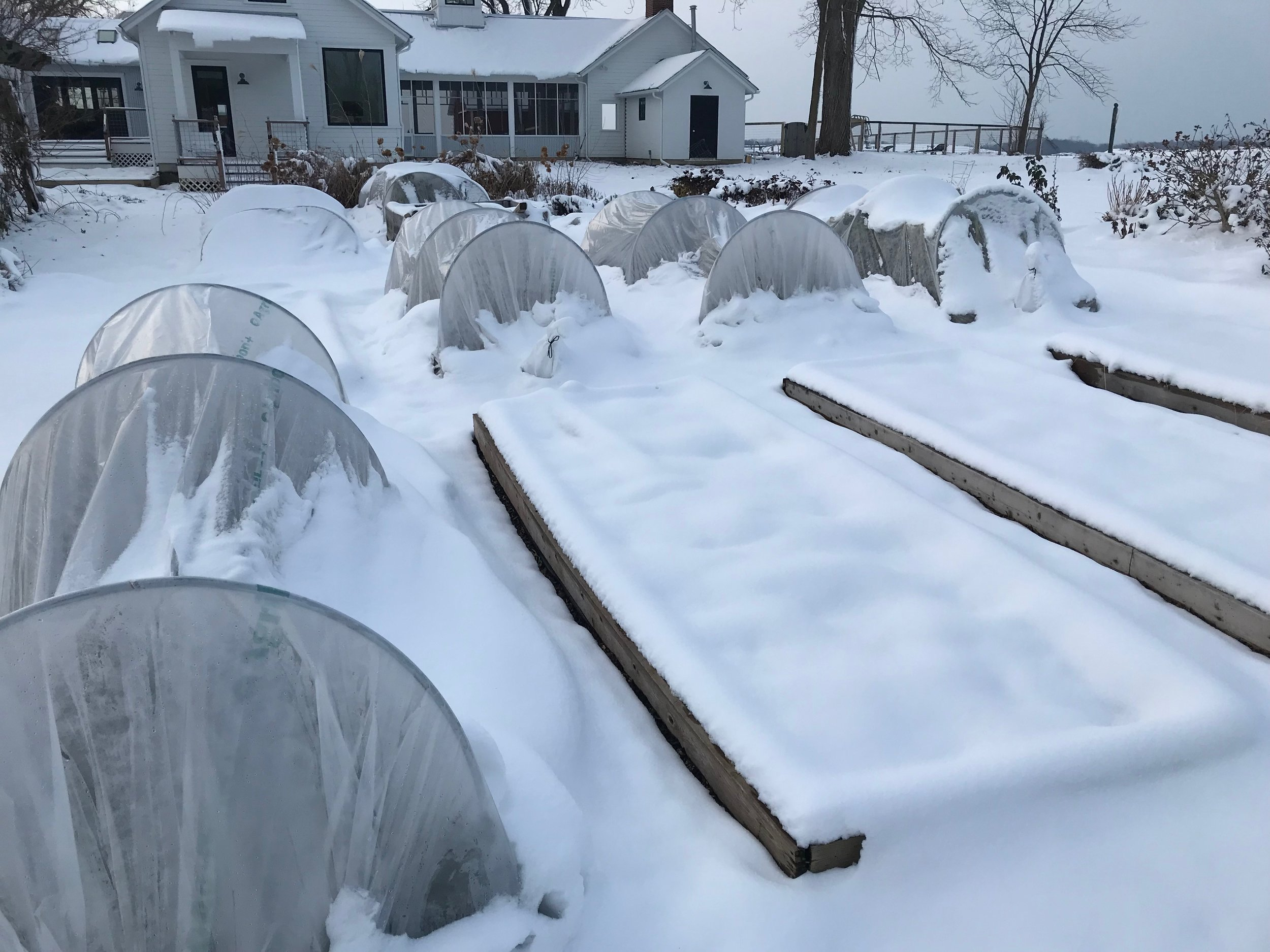 December beds with blankets of snow