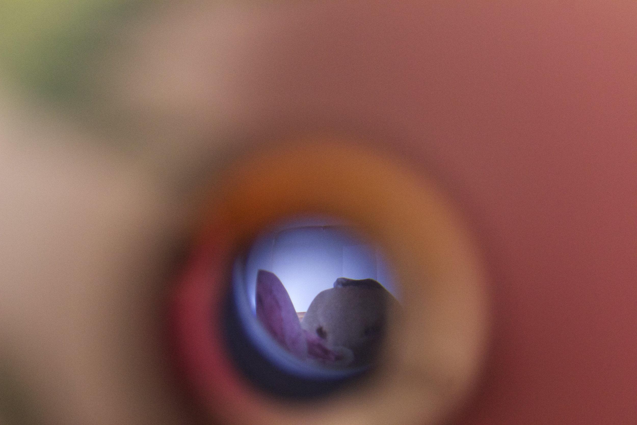 4.Watching You, Watching me detail  copy.jpg