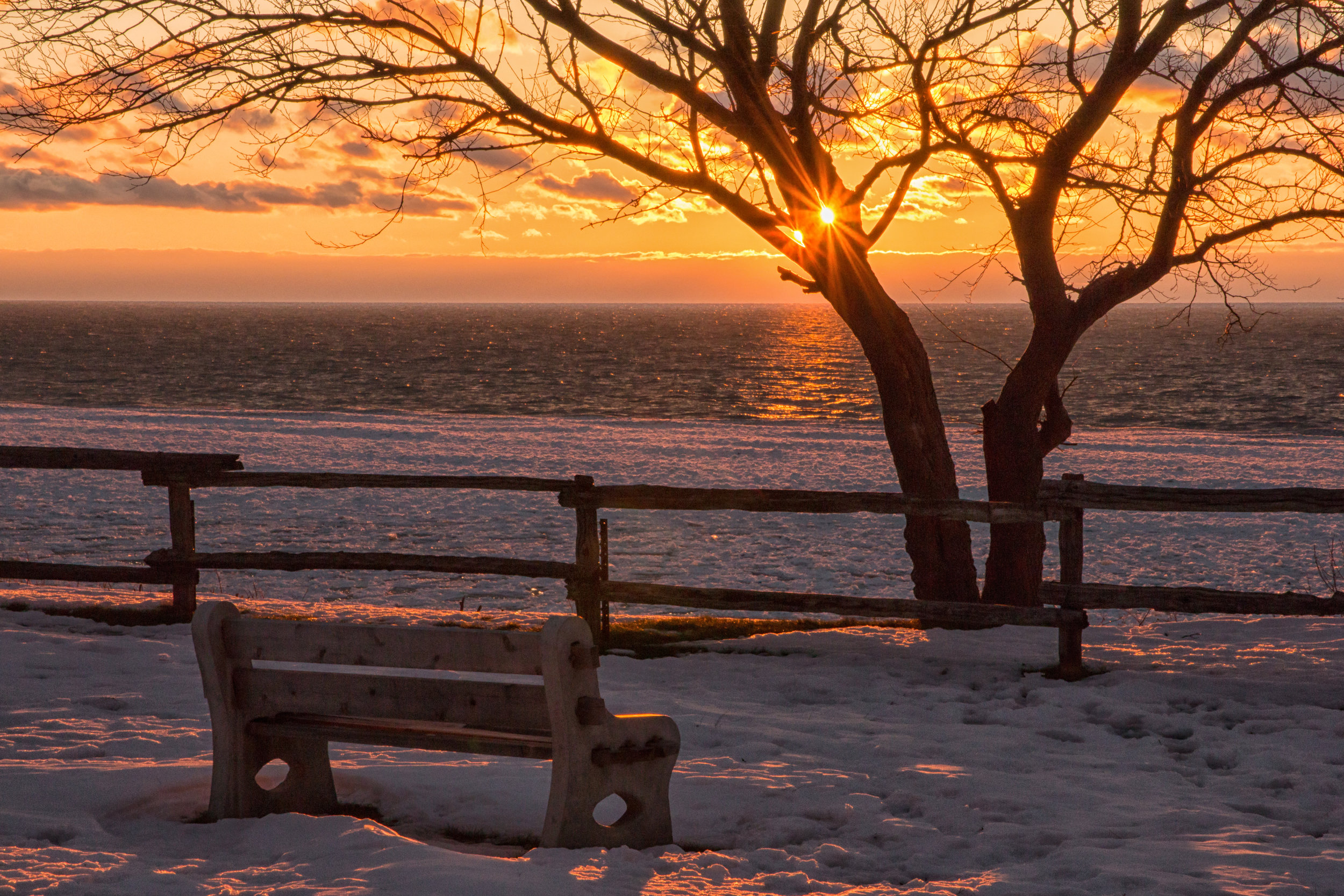 Winter Bench Pioneer Park