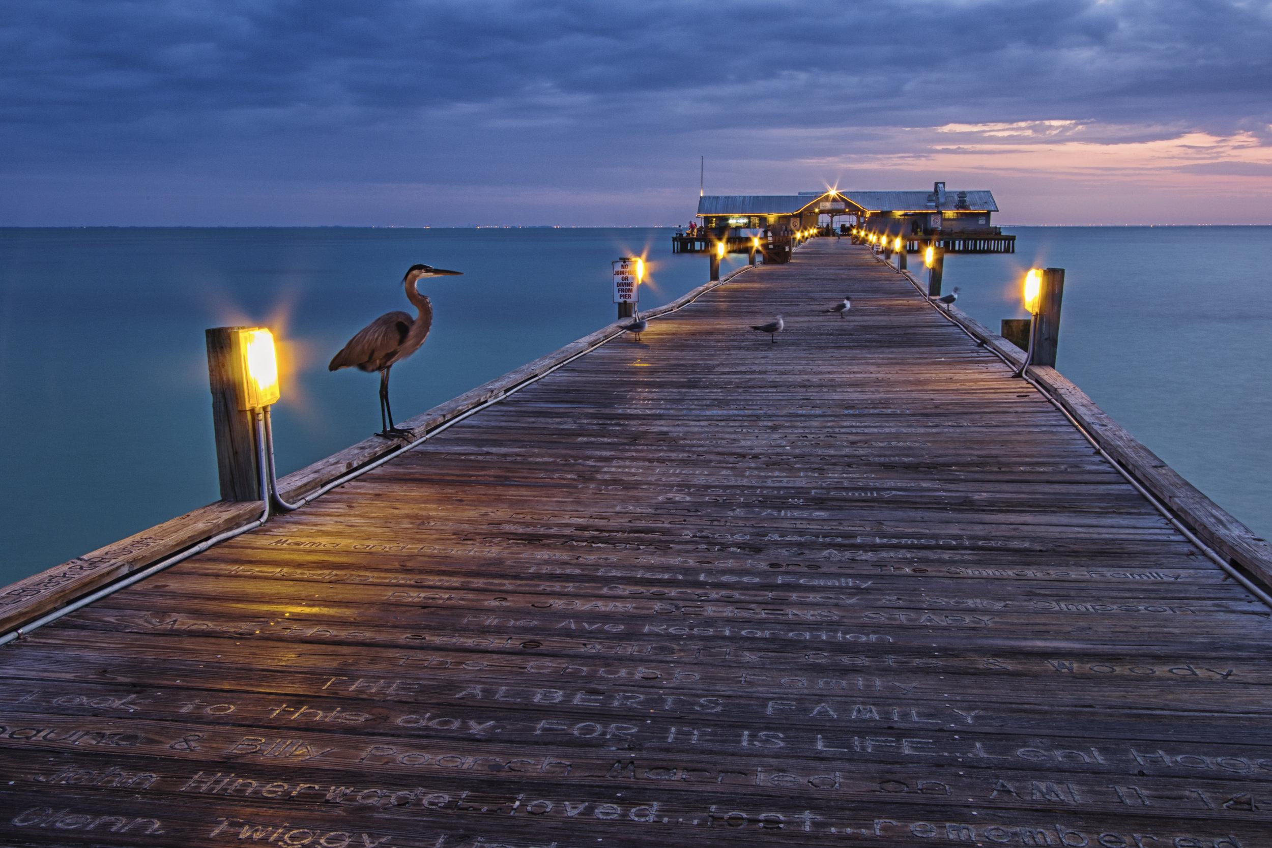 Blue Heron Pier.jpg