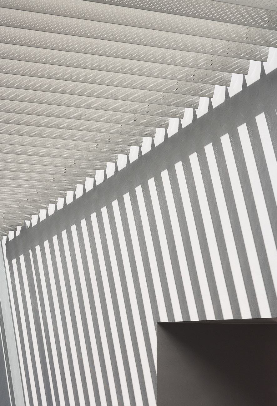 Architectural detail of the louvre shades. Silhouettes create the most geometric shadow pattern.