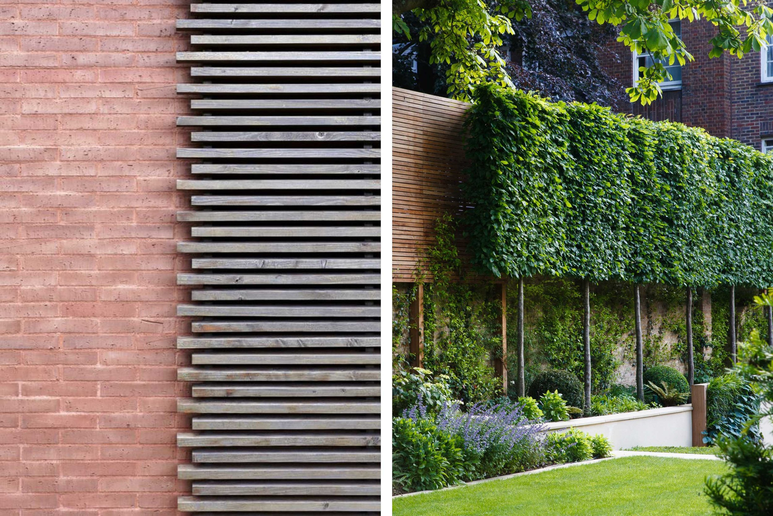 Brick and wooden cladding material reference for the Dalton Street scheme. Pleached trees will line the back garden for the privicy of neghbours and local residents.