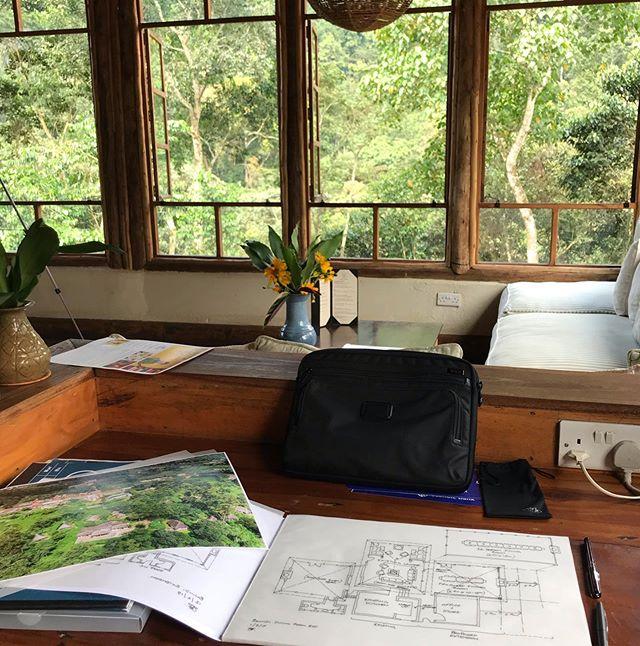 There are a lot of advantages in working overseas! The office for the day in Bwindi lodge, Uganda #volcanoessafaris #uganda #mountaingorilla #bwindi #deskfortheday