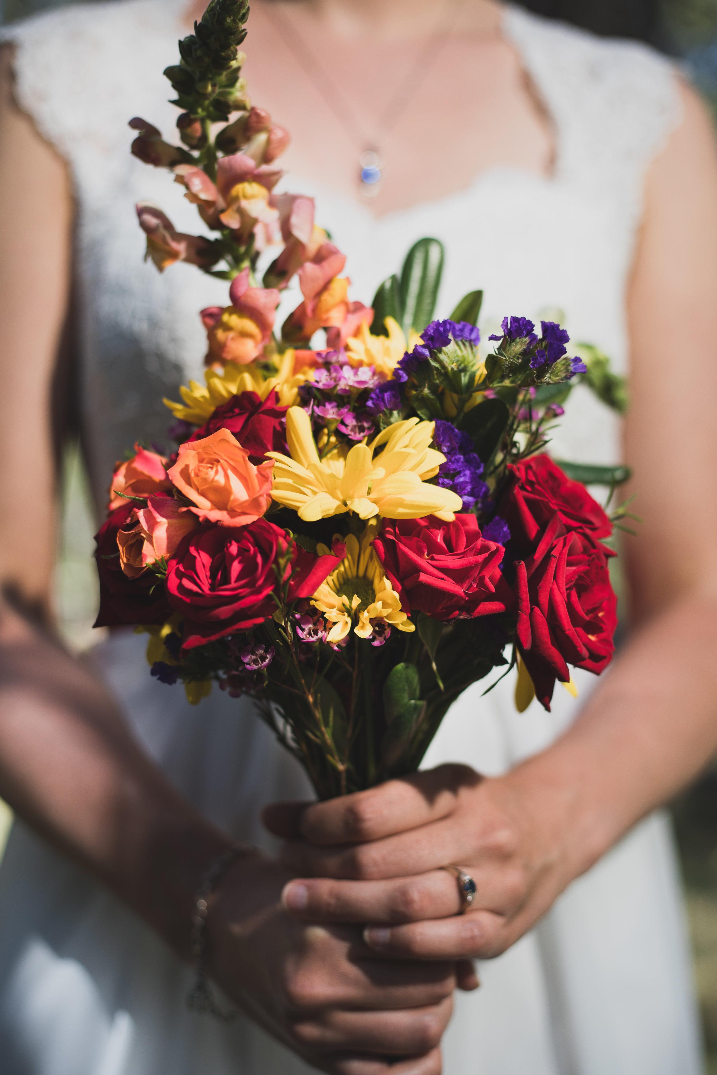 flagstaff-nordic-center-wedding-15.jpg