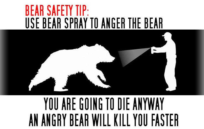 Photo courtesy of www.bearmageddonnews.com