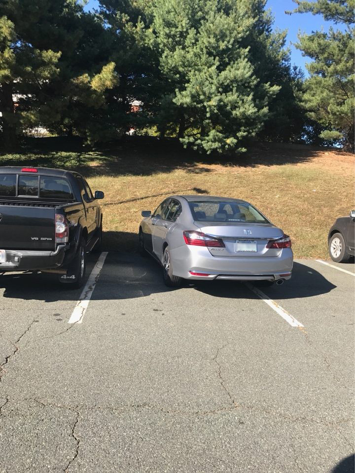 Dumbass parks his priceless Honda Accord to protect its resale value Photo courtesy of Kim Hopkin.