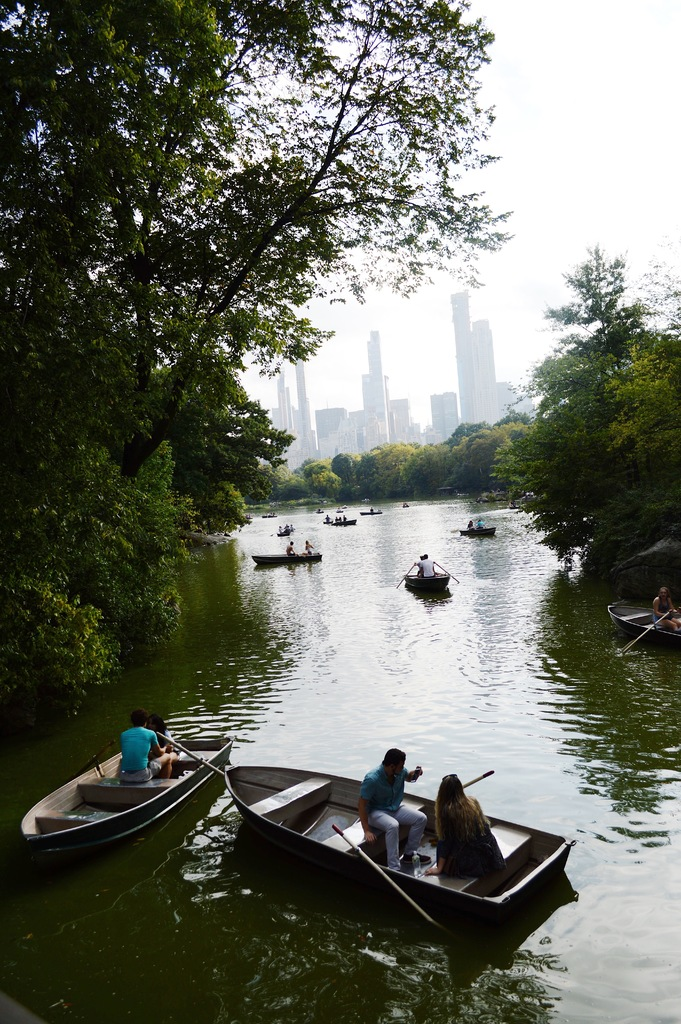 The City as seen from Central Park. Kolleen Gladden /  Virginia Law Weekly .