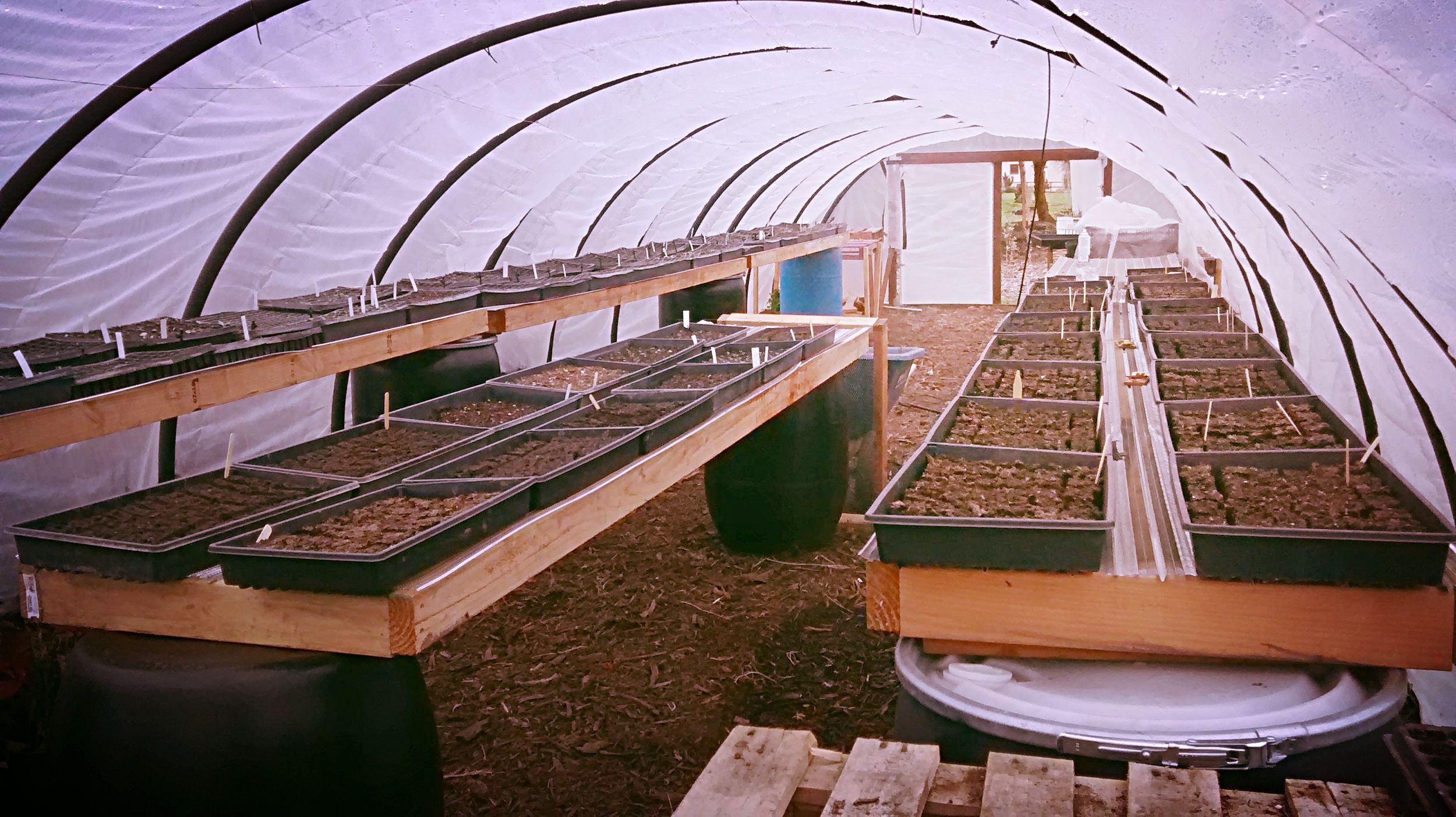 Diy Build Solar Seed Benches Greenhouse Heat Sink Benches Thiselle Creek Farm
