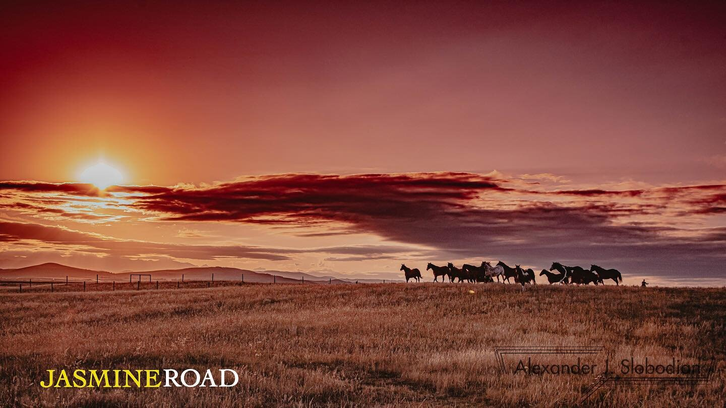 """SPOTLIGHT ON: JASMINE ROAD   Jasmine Road may be a small film, with few cast and locations, but its story is anything but little. Located in rural Alberta, Jasmine Road is a movie about a Syrian refugee family and their arrival on Canadian soil.  According to a release, the film follows """"a recently widowed western rancher who takes in a Syrian refugee family in the small conservative town of Red River.""""  It's expected to be released in Canada in summer 2020."""