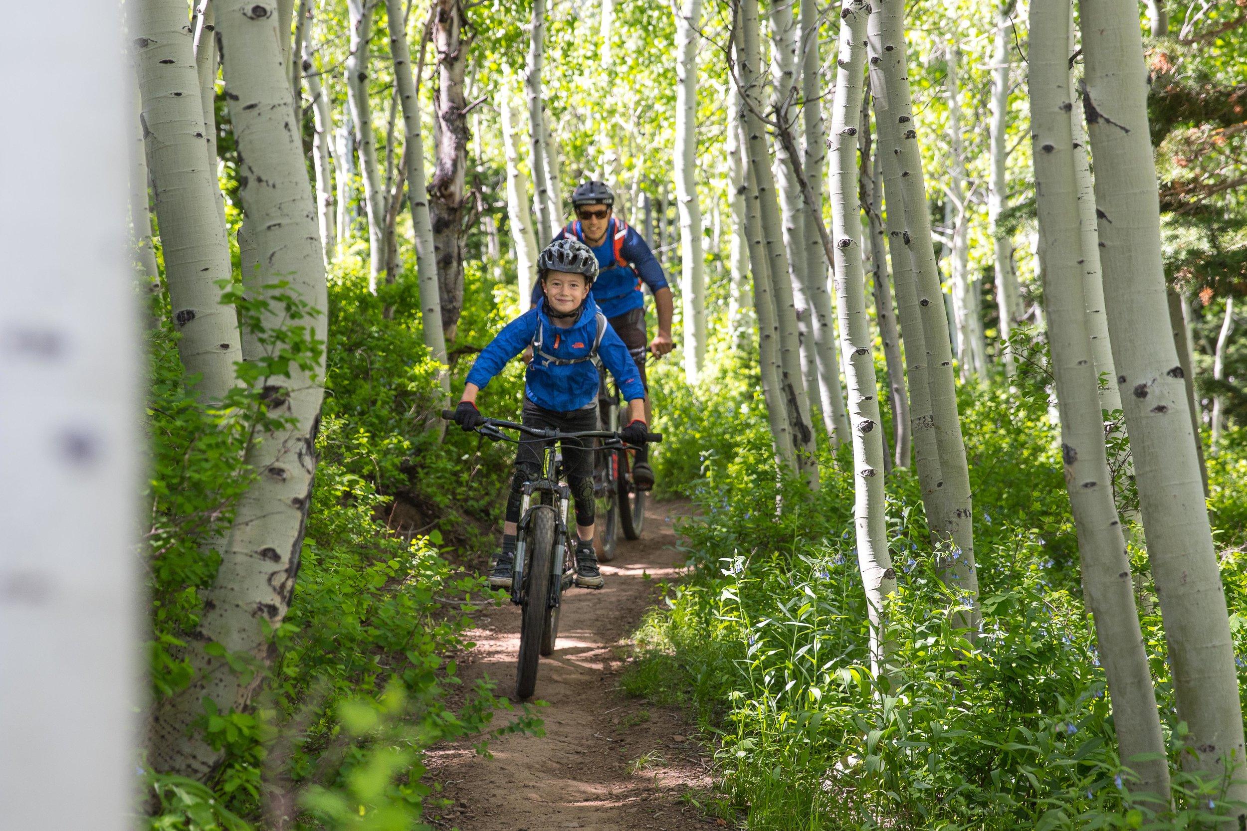 2016 - Milo Porter & Eric Porter, Mid-Mountain Trail