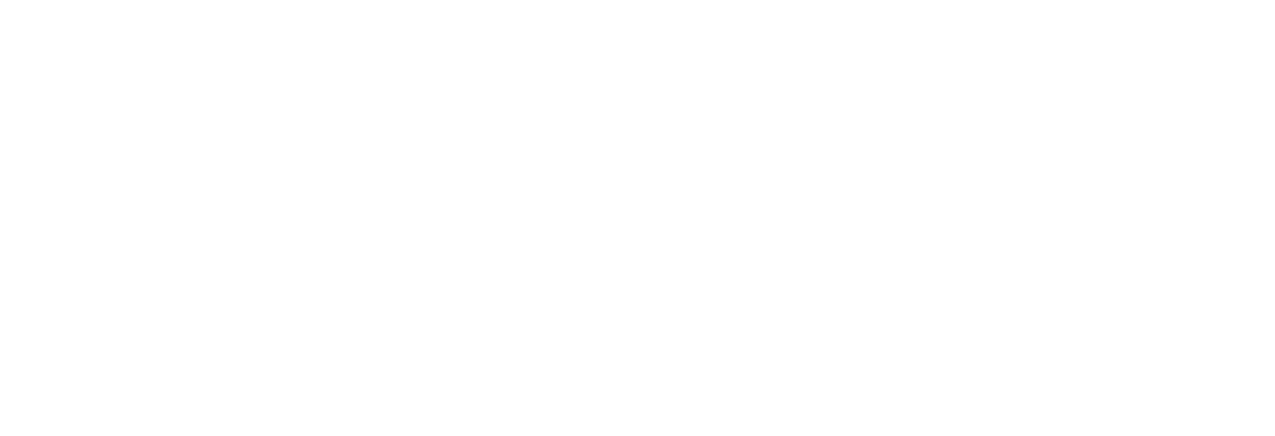 DOWNLOAD THE APP-logo-white.png