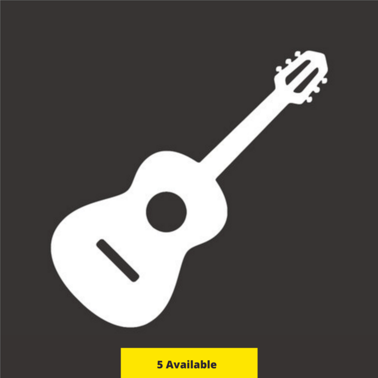 **ACOUSTIC DUO HOUSE SHOW PACKAGE - $650