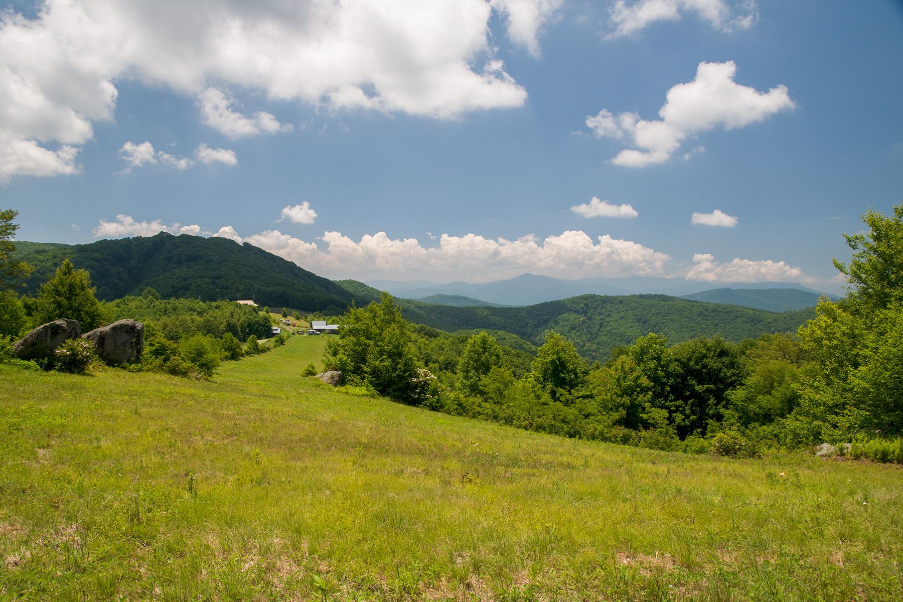 A view of John and Lori's property.  Photo:  Lori Kincaid