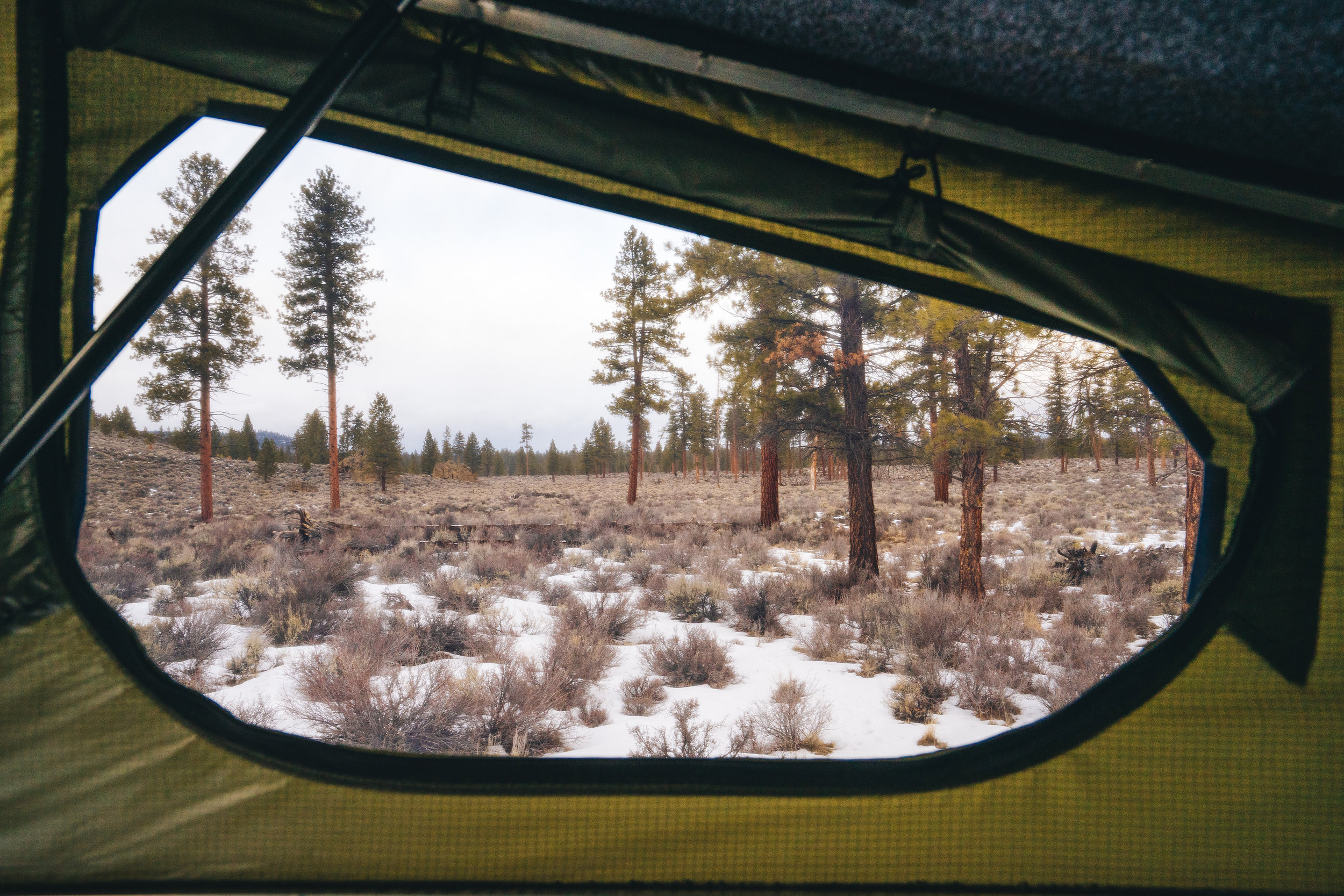 Michael Gorski camper window