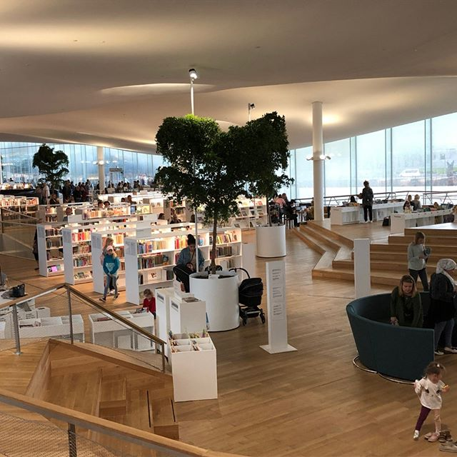 Inside the Oodi (Central Library in Helsinki). It's a playful space with plenty of places to discover. The ceiling floats as a smooth canopy and bookshelves are low enough to have long views down this minimally columned space.