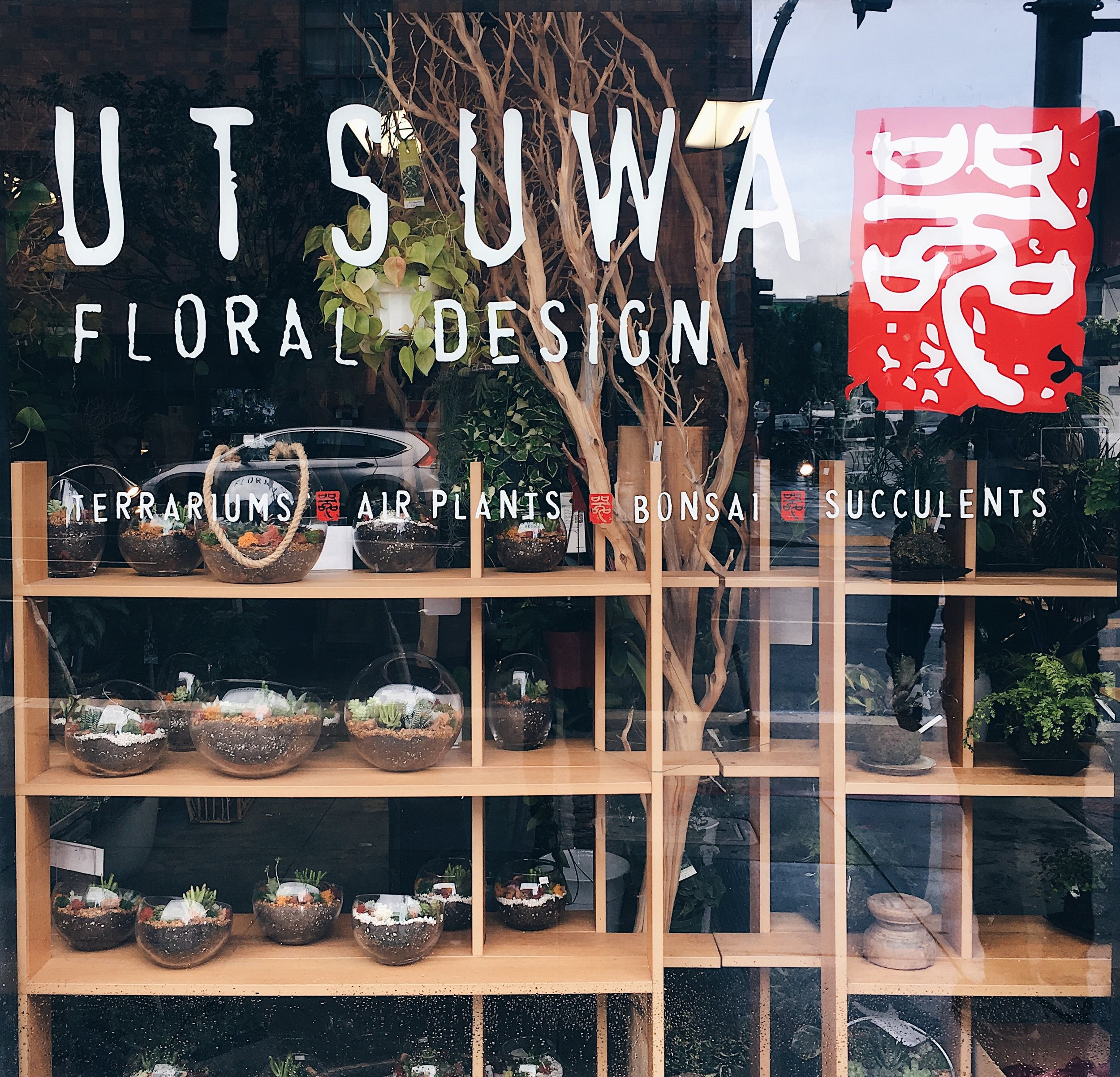 UTSUWA Floral design shop in San Francisco, California. Succulents and wooden display fixtures.