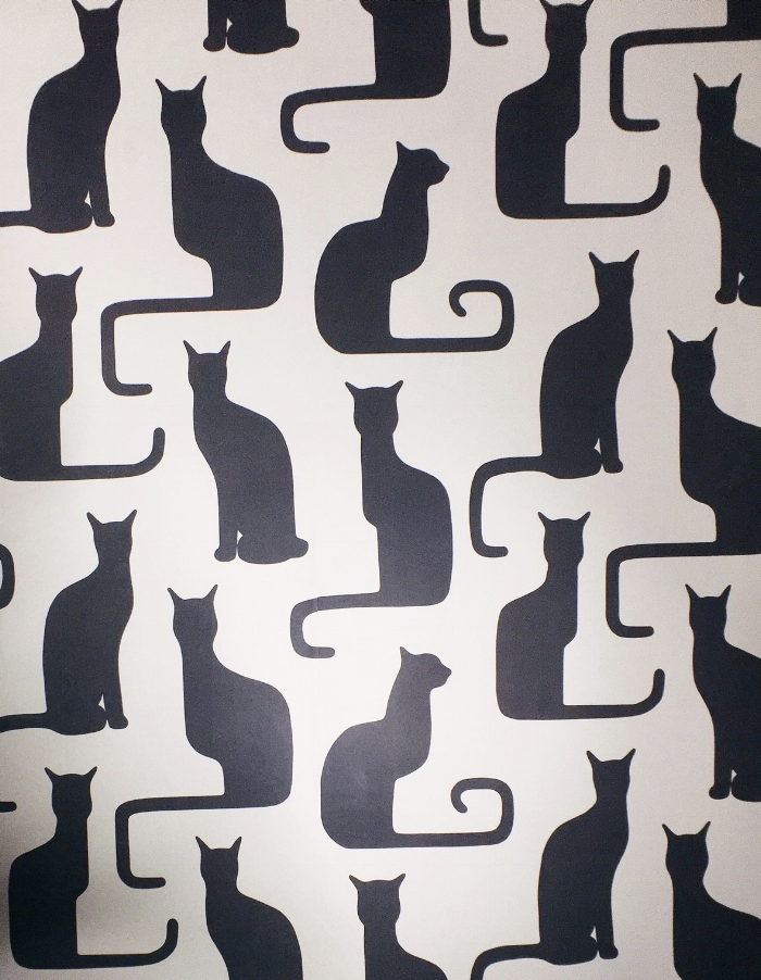 Black Cat Wallpaper in The Dorian Video Photo Booth.