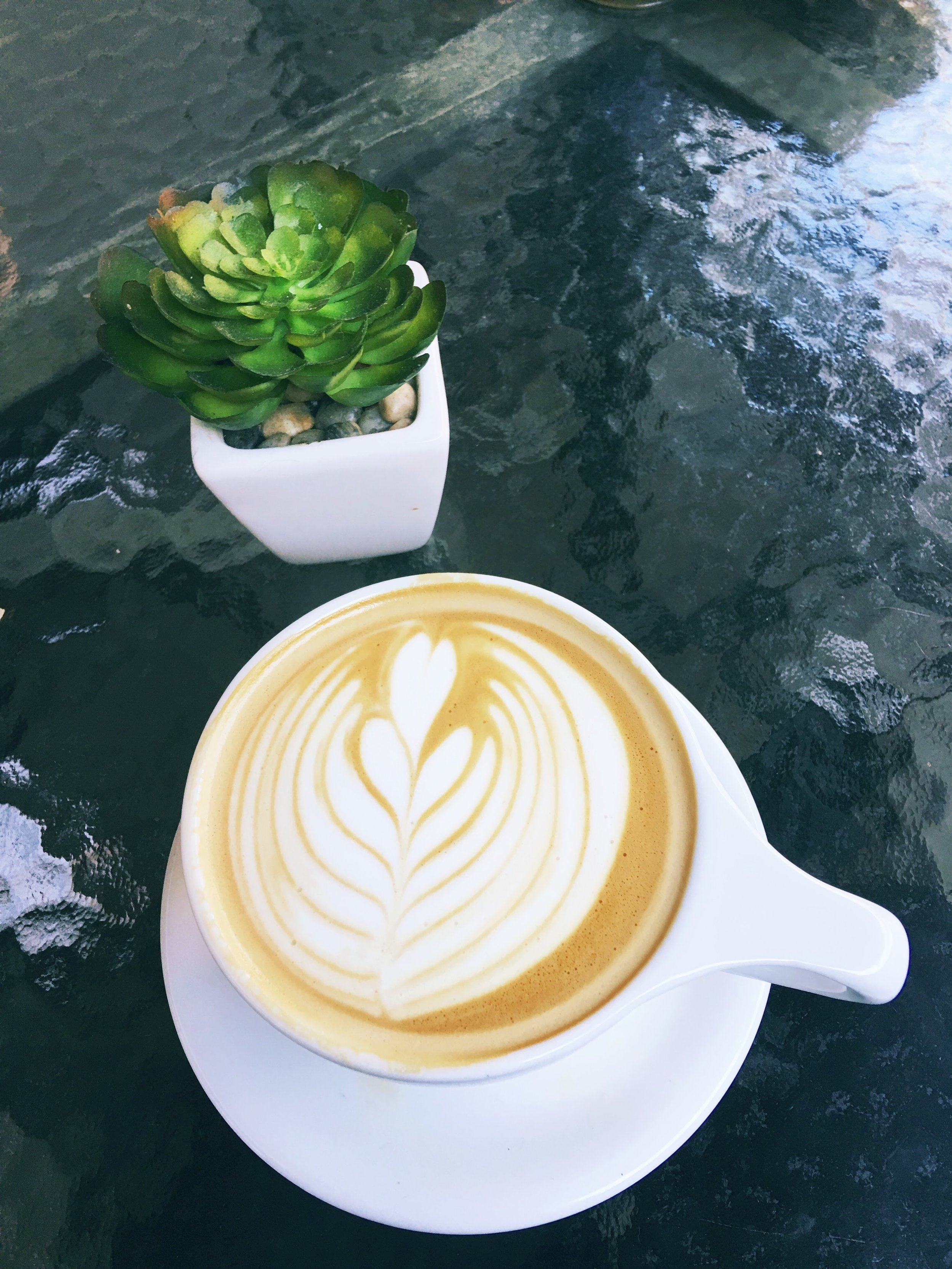 Latte Art and Succulent from La Mo Cafe in Turlock, CA