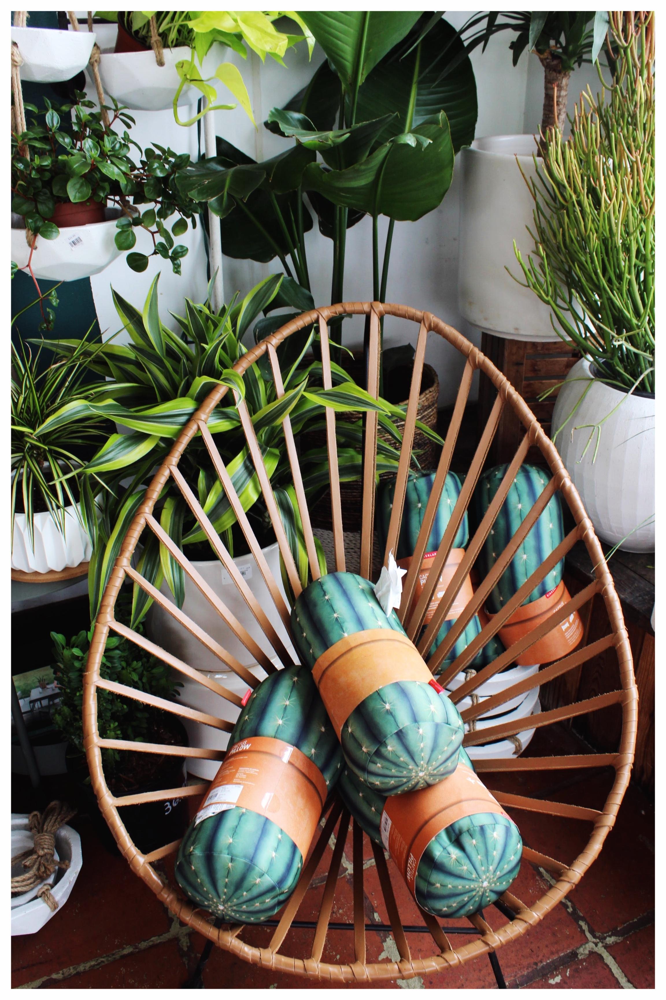 Woven Chair and Plush Pillow Display at Dig Gardens in Santa Cruz